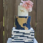Plane World Blue Travel Wedding Cakes Missouri