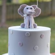 Elephant Baby Shower Cakes Springfield