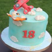 Airplane Flying Skydiving Birthday Cakes Missouri