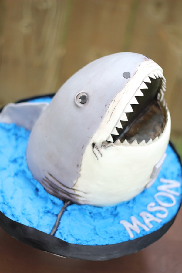 shark Birthday Cakes Missouri